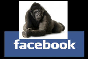 What will Facebook business page changes mean to you?